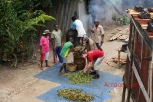 Actualité de la vanille de Madagascar Par Arnaud Sion expert en vanille