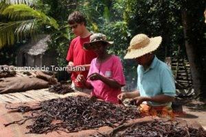Vanille de Madagascar, Vanille Gold Bourbon de Madagascar