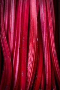 Recette de Confiture de rhubarbe, réglisse à la vanille de Madagascar