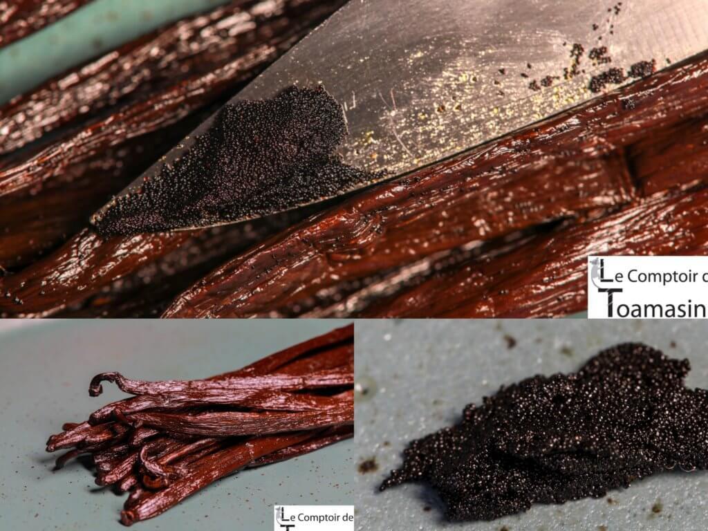 Vanille Bourbon Gold de Madagascar du Comptoir de Toamasina - Spécialiste en vanille