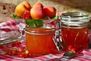 Recette de Confiture d'abricot à la vanille de Madagascar