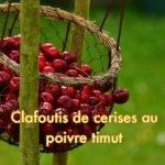clafoutis aux cerises et poivre timut