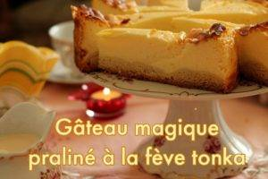 gâteau magique praliné à la fève tonka