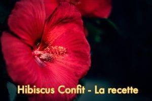 HIBISCUS CONFIT