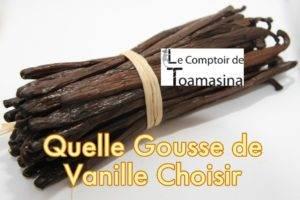 Quelle Gousse de vanille choisir