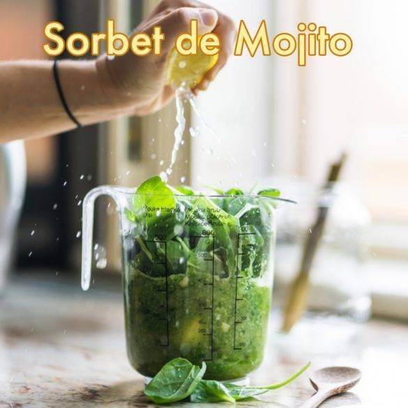 Recette du Sorbet de Mojito