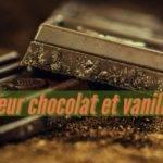 Recette de pâtisserie de Cœur chocolat vanille