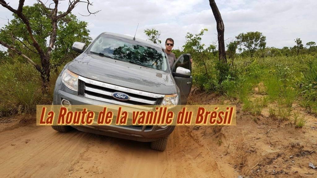 Vanille du Brésil, la route de la vanille du Cerrado