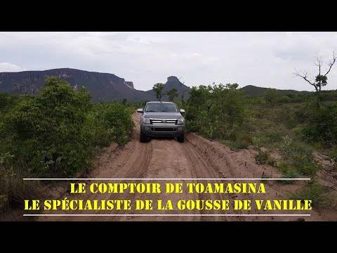 Spécialiste de la gousse de vanille bourbon de Madagascar
