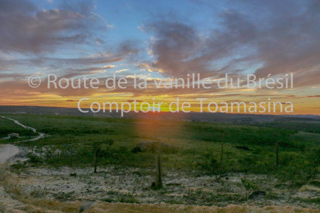La route de la vanille du Comptoir de Toamasina