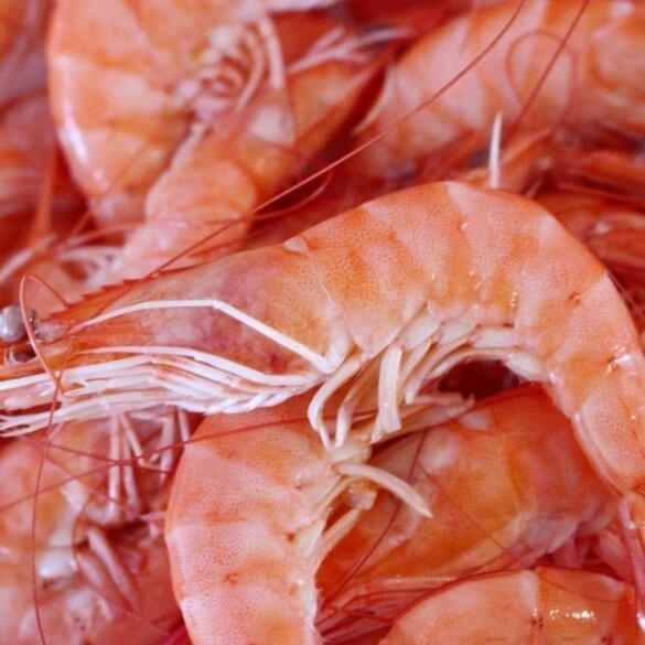 Vatapá de crevettes - Recette Brésilienne