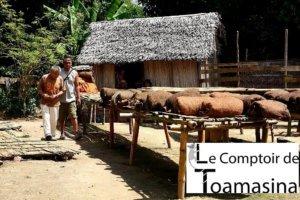 Comprar baunilha de Madagascar em Rio de Janeiro