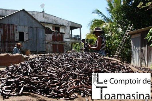 Fava de Baunilha de Madagascar no brasil