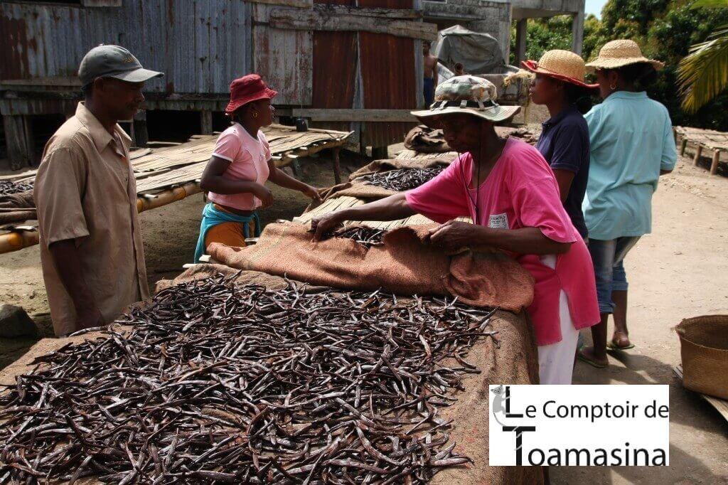 Comprar a melhor fava de baunilha no Brasil e no Porugal