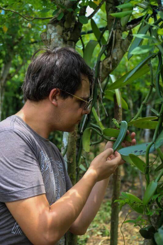 arnaud Vanille dans la plantation de David Almeira à Bahia