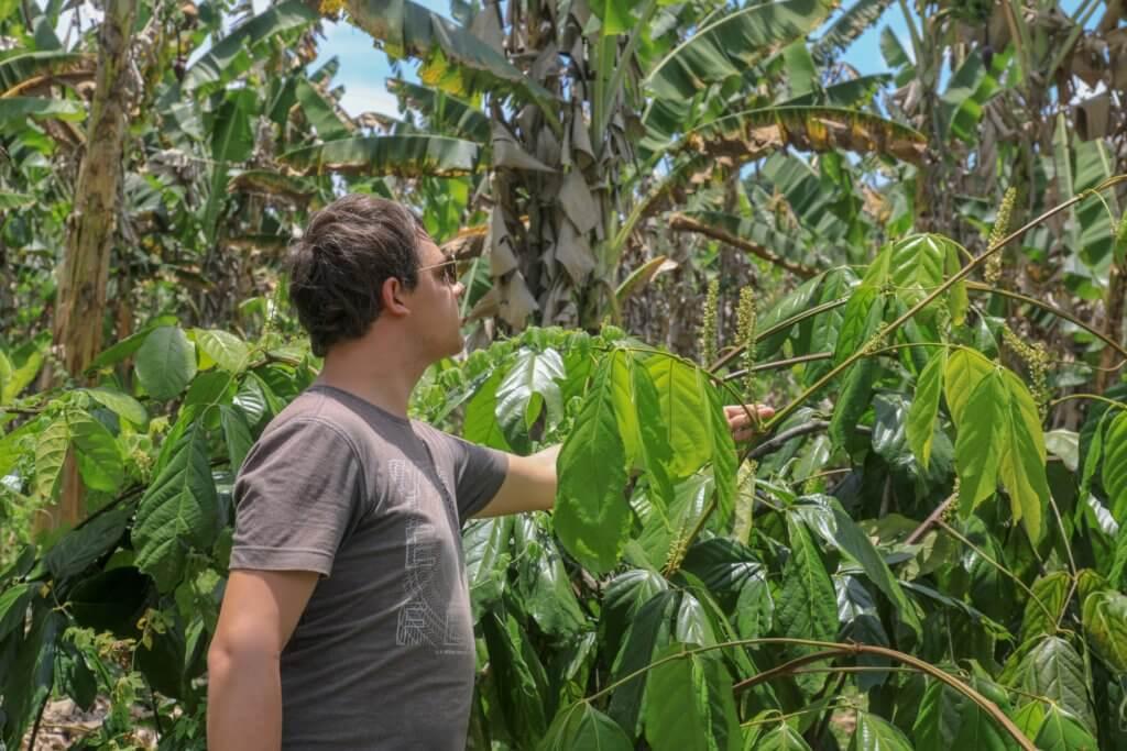 Arnaud dans une plantation d'épices au Bréisl