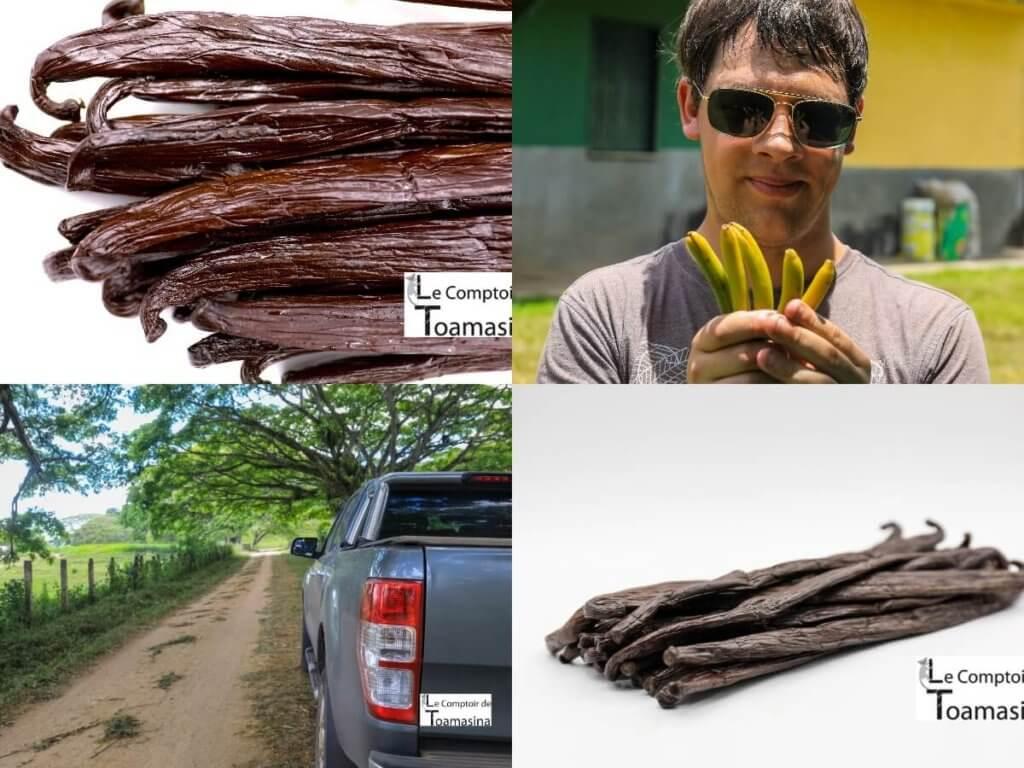 Vanille Bourbon Gold Luxe de Madagascar