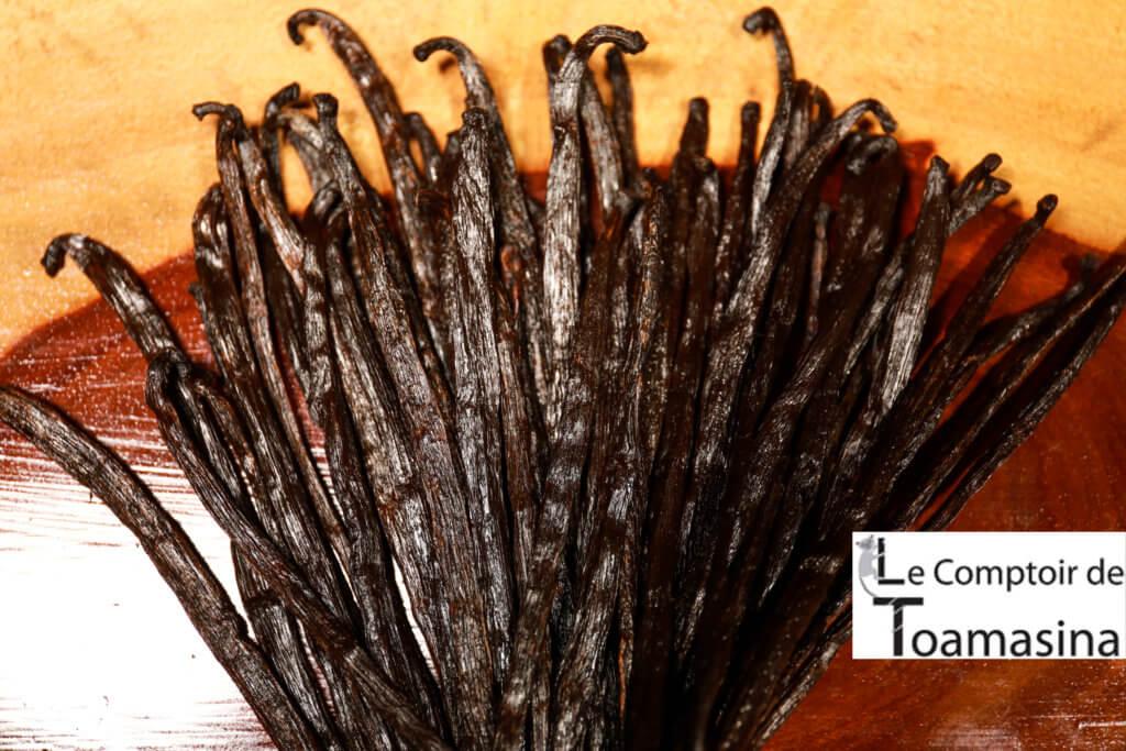 comprar favas de baunilha bourbon de Madagascar no brasil