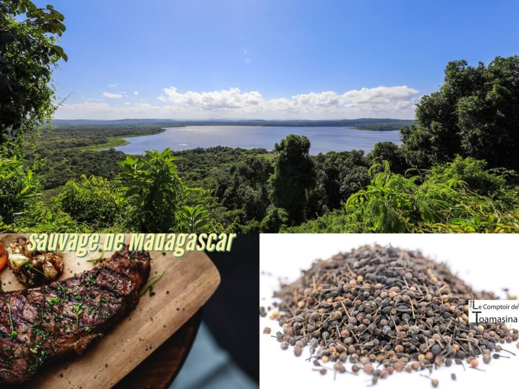 Qu'est-ce que le poivre sauvage de Madagascar