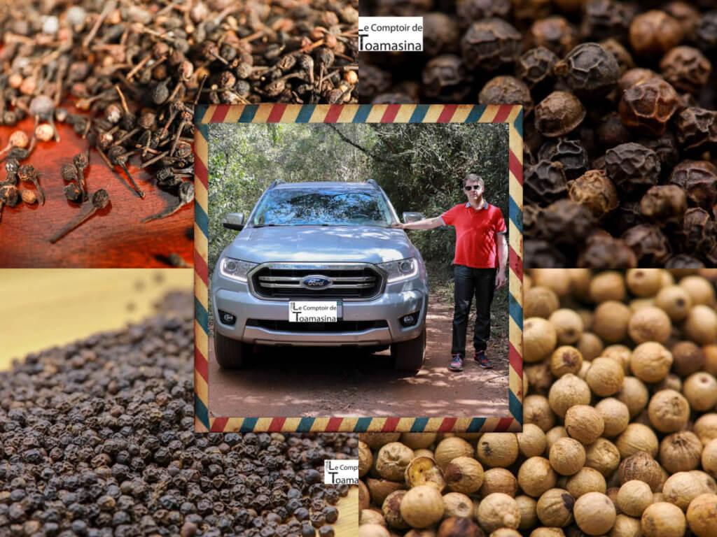 Acheter du poivre - Les meilleures terres de poivres en grains