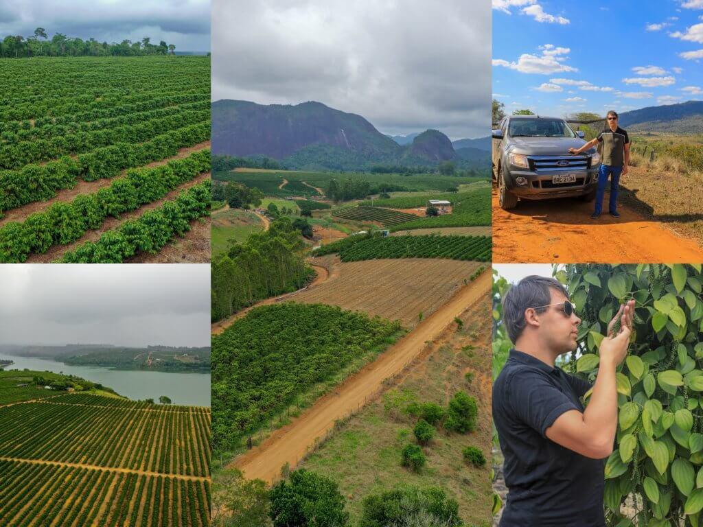 Poivre noir en grains - La boutique officielle des poivres brésiliens et du monde (1)